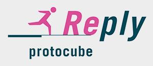 REPLY_PROTOCUBE_GRIGIO_300